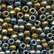 16037 Abalone Size 6 Beads