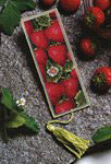Strawberries  Cross Stitch Kit