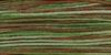 4135 Foliage Weeks Dye Works Floss