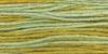 2206 Pistachio Weeks Dye Works Floss