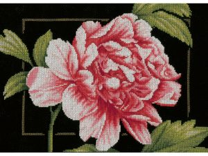 Pink Rose Cross Stitch Kit by Lanarte