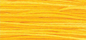 2224 Squash Weeks Dye Works Floss