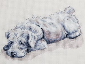 Murphy Counted Cross Stitch Kit by Cecil Aldin CACS03