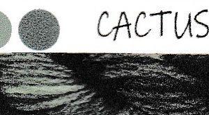 Cactus No. 1