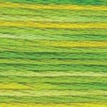 4069 Colour Variations Perle 5  Margarita