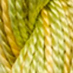 4070 Colour Variations Perle 5  Autumn Leaves